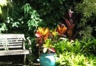 Howard Springs Tropical landscaping 11