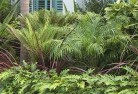 Howard Springs Tropical landscaping 2