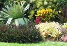 Howard Springs Tropical landscaping 9